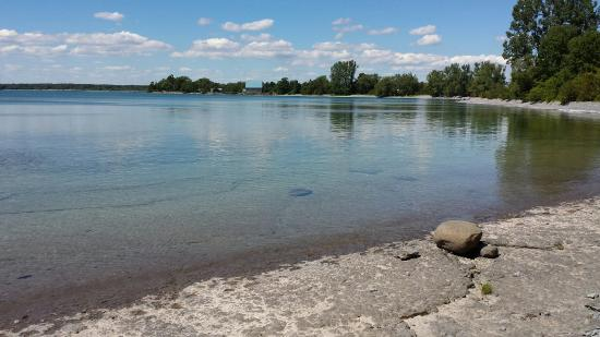 Point Petre Wildlife Conservation Area: A beautiful day!  The water was so clear and warm.