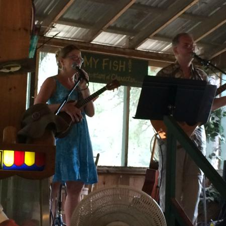 The Bullfrog Fish Farm: Second Hand Hearts - delightful music!