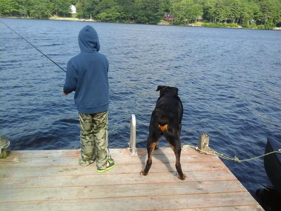 Bremen, ME: A boy and his dog, Camp Biscay