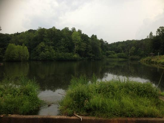 Pilot Knob Inn: The lake