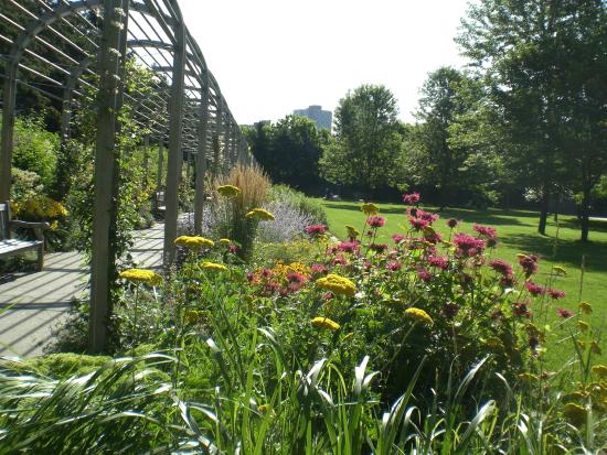 Minneapolis Sculpture Garden: Flower Garden In The Sculpture Garden