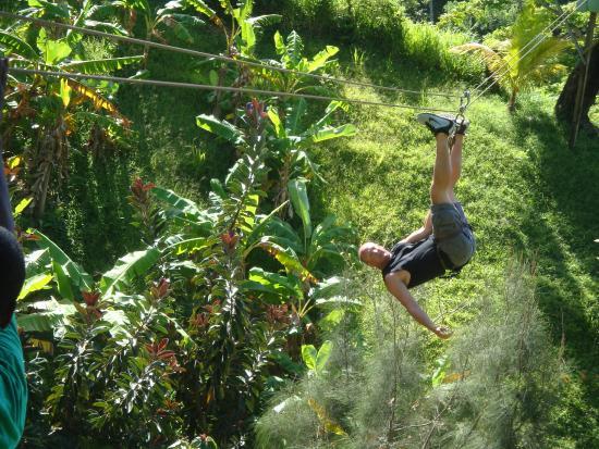 Hobbies Hideaway: Zipline