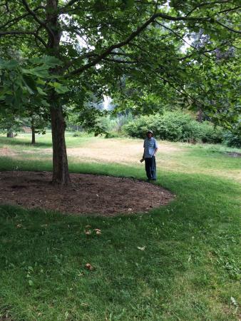 John A. Finch Arboretum : photo2.jpg