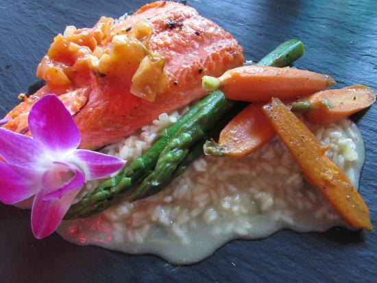 The Stone Cellar: salmon and risotto