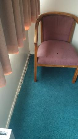 Cassandra Hotel: Dirty/stained carpets cut short of the walls and no carpet under the beds