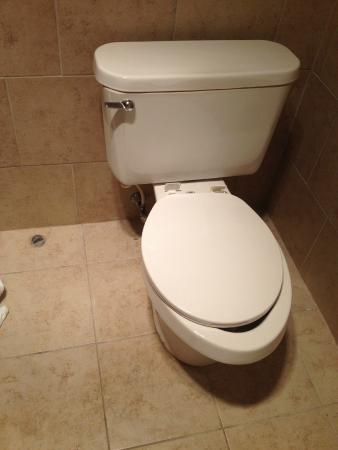 Beaver Dam, WI: Does this seat looks like it belongs on this toilet?