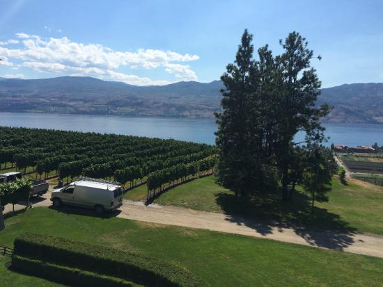 West Kelowna, Canadá: View from the Estate-Okanagan Lake