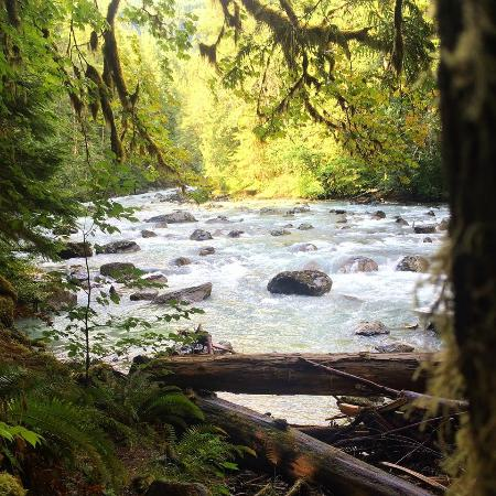 Douglas Fir Campground: From the hiking trail near the campground