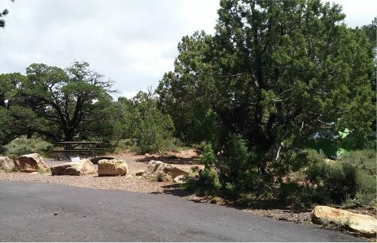 Desert View Campground: A campground spot