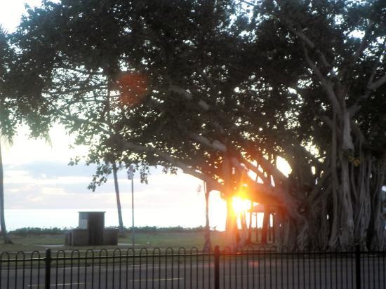 Rowes Bay Beachfront Holiday Park: Sunrise photo taken from villa balcony