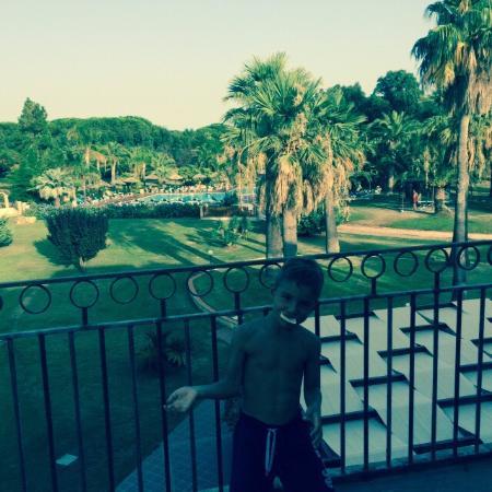 Baia delle Palme: situer au calme entourer de palmier et d'un environnement idéal pour se reposer joli appartement