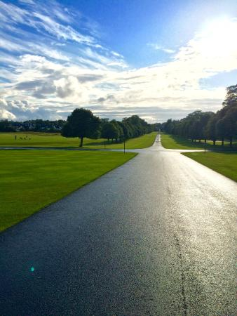 Adare Manor: The golf course and road we walked daily