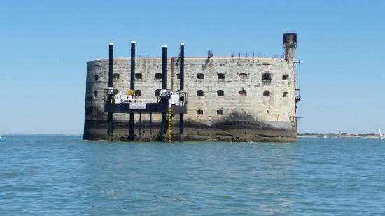 La Rochelle Croisière Haka