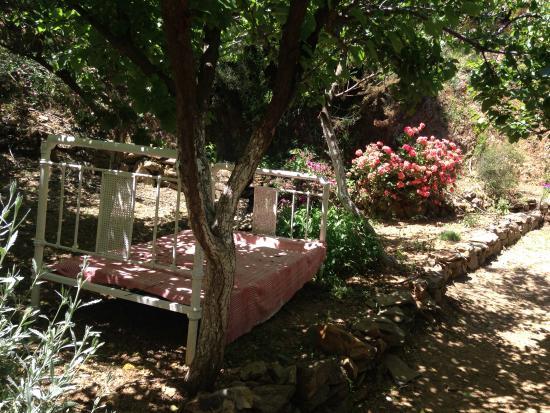 Botanical Park Of Crete - Picture of Botanical Park ...