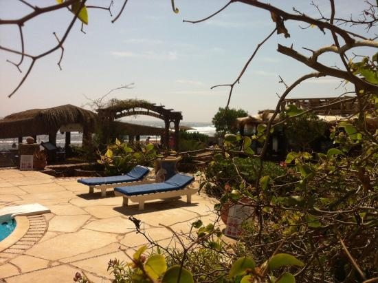 Coral Coast Hotel: What a lovely hotel