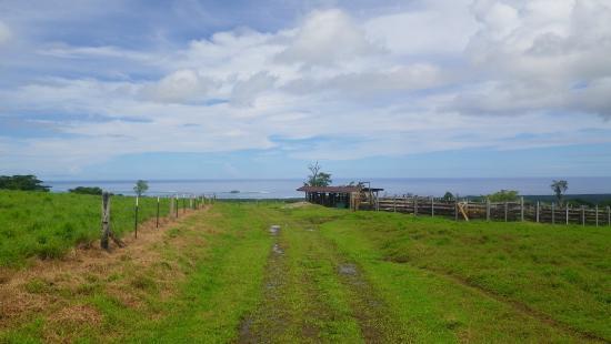 Si'umu, Samoa: The view halfway on the hill