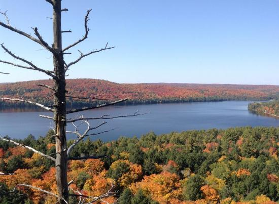 Algonquin Provincial Park: すばらしい紅葉