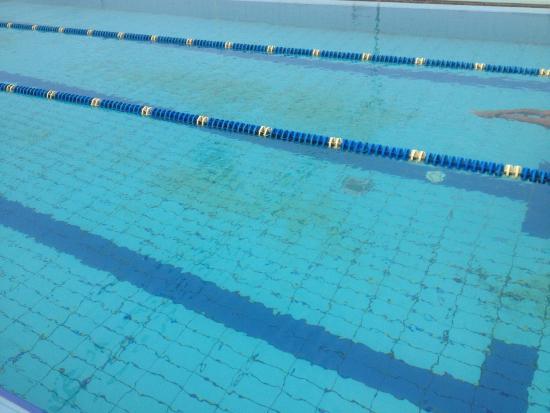 Bagno Balena Viareggio Palestra : Una delle piscine picture of balena viareggio tripadvisor