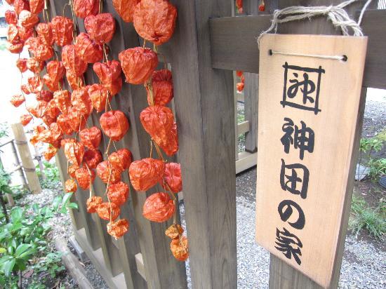 神田の家 (井政-IMASA-)