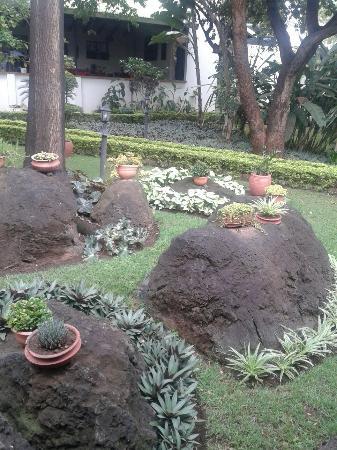 Bristol Cottages Kilimanjaro: nice food