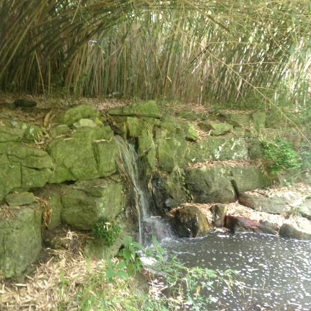 Locust Valley, Nova York: mini waterfall
