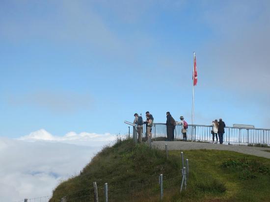 Grindelwald, Switzerland: メンリッヘンの展望台。ウェンゲンやミューレーンの町が見渡せました。