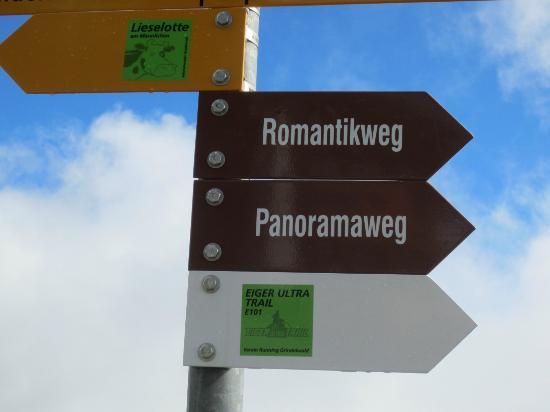 Grindelwald, Sveits: クライネシャイデックまで歩く初心者コースのパノラマウェグとアルピグレンまで下る中級のロマンチックウェグを歩きました。