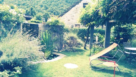 Casa Ambica : Garten