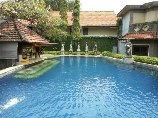 Putu Bali Villa and Spa: The pool area