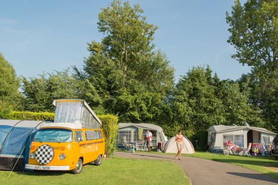 Vakantiepark Koningshof : Camping at Koningshof