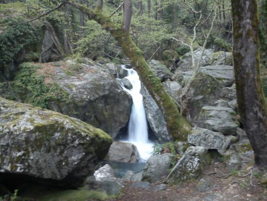 Τέλειο!! - Picture of Mount Pelion, Thessaly - TripAdvisor