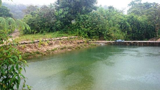 Mera, Equador: piscina