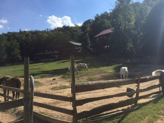 French Broad Outpost Ranch: View of Hotel