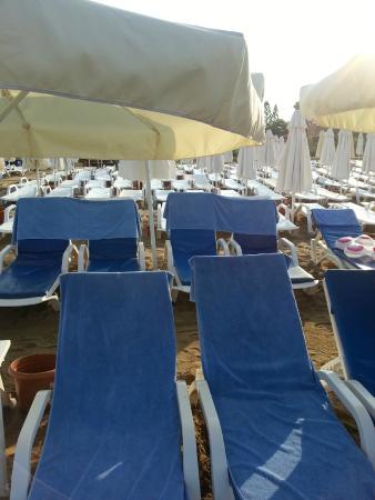 Side Prenses Resort Hotel & Spa: Plaj