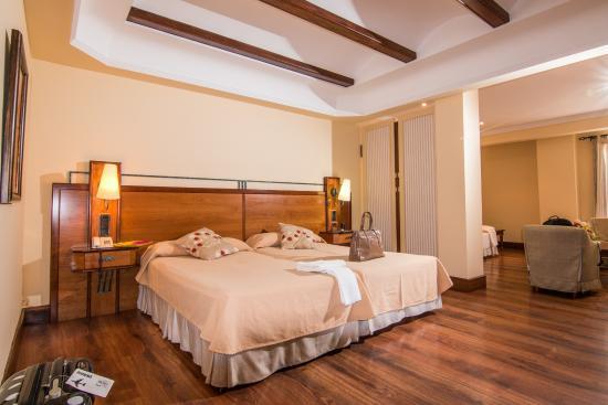 Hotel Abades Guadix: Habitación