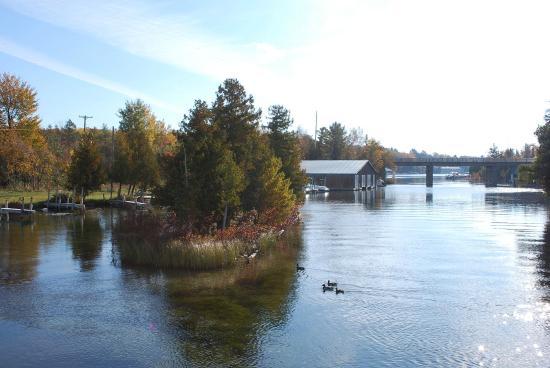 Bellaire, MI: Clam Lake
