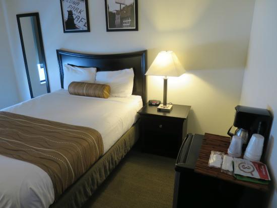The Grove, West Seattle Inn: Great sleep, plenty of space.