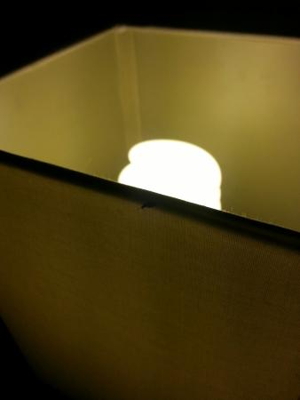 """Courtyard by Marriott Wilmington-Wrightsville Beach: Not a bug several. All over lamp in """"freshly cleaned room"""""""