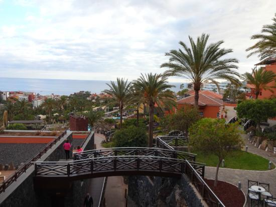View from the bar picture of melia jardines del teide for Jardines del teide tenerife