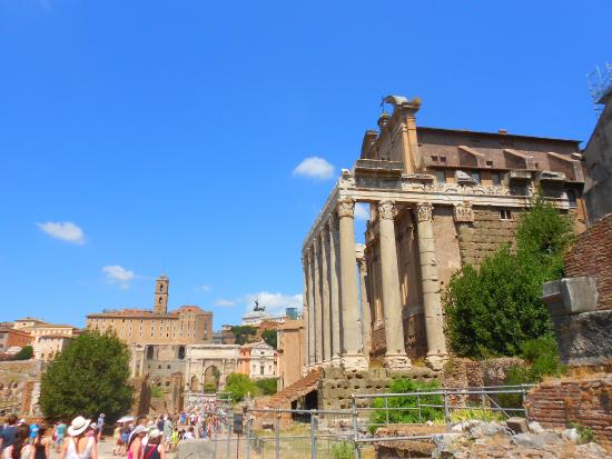 Mind the Guide: The Roman Forum