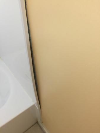 Blue Dolphin Inn: shower peeling away from the wall