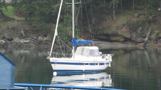 Galiano Island, Canada: Sandpiper waiting for you-Retreat Cove