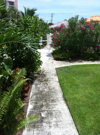 Budget Inn Ocean Resort: Motel Anlage