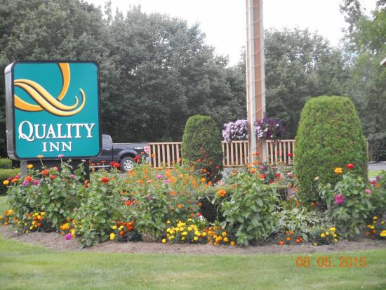 Quality Inn Shelburne : front of hotel  beautiful flowers