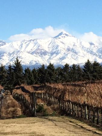 Mendoza Wine Bike Tour: Tupungato en invierno