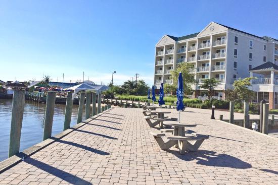 hilton garden inn kent island view of building from dock - Hilton Garden Inn Kent Island