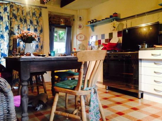 La Coquille, Francia: Kitchen