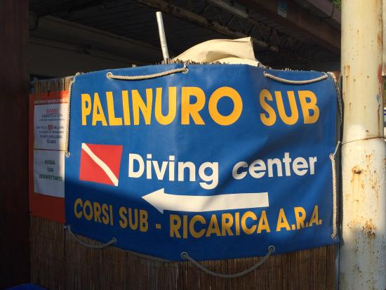 ‪Palinuro Sub Diving Center‬