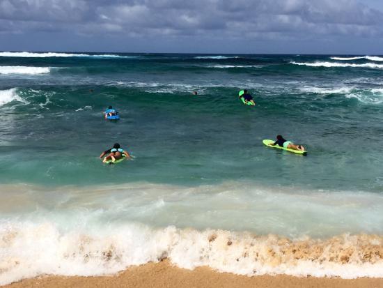 Kauai Surf School Foto