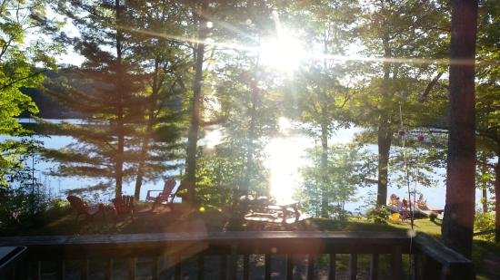 Mill Lake Cottage Resort: View from the Seguin cottage - early morning
